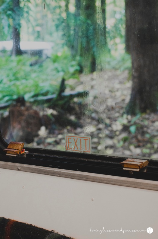 emergency-window