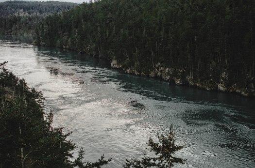 pacific northwest, evergreens, rocks, green trees, ocean @livingless.wordpress.com