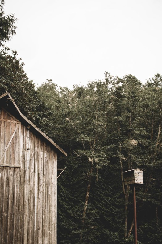 old wooden barn, faded wooden barn @livingless.wordpress.com